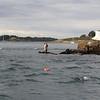 Pêche dans l'exutoire du Golf du Morbihan. Une affaire de connaisseurs.