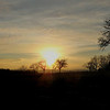 La campagne auvergnate, terre de chênes