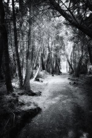 Très Oser la photo paysage en noir et blanc | Fairedelabellephoto.com HG53