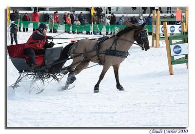 course chevaux plaines abraham