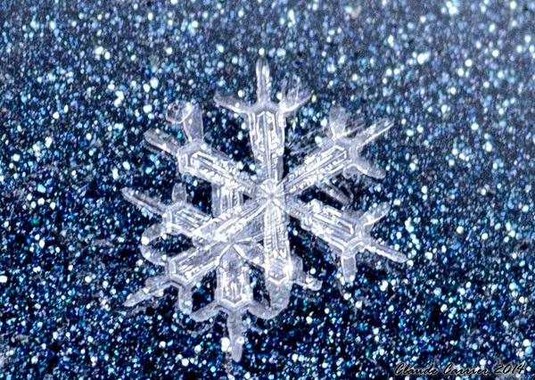 Flocon de neige sur mon automobile.