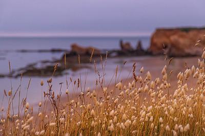 La pointe du Bile au lever du soleil (Pointe du Bile at sunrise)