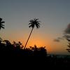 Depuis chez Nicolas - Papeete - Tahiti -