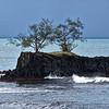 Saison des pluies - Côte Est - Tahiti -