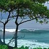La vague - Côte Est - Papenoo - Tahiti -