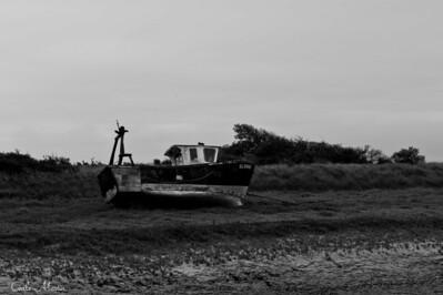 Baie de Somme (2011)