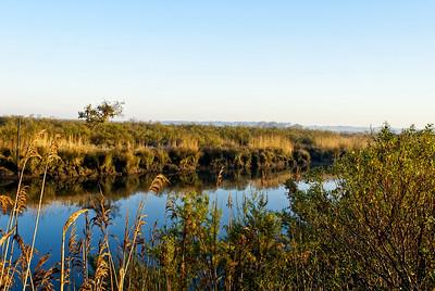 Parc naturel du Teich.