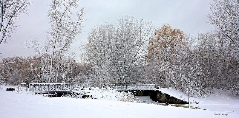 Parc de la Frayère le 28 février 2013.