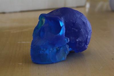 3D Printing Homo naledi