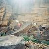 Climbing the escarpment near Ouadane