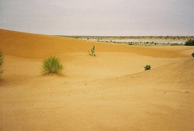 Peace Corps Mauritania, 2003-2005