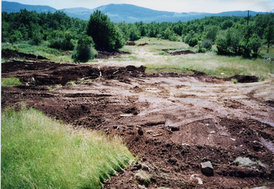 Mass Grave, 1995