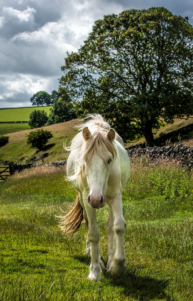 White Horse in the Peak District in Derbyshire