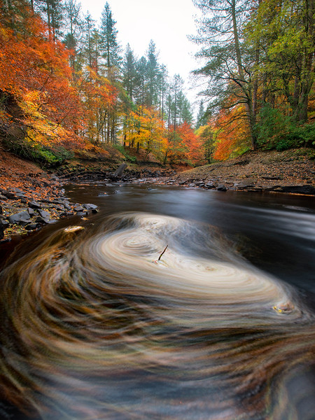 Autumnal Swirls - Ladybower Reservoir - Peak District National Park