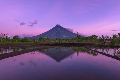 Diamond Mayon