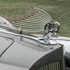 A gorgeous Packard swan hood emblem.