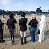 Pebble Beach Interscholastic Equestrian Association