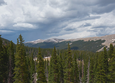 Divide Trail above East Fork Valley