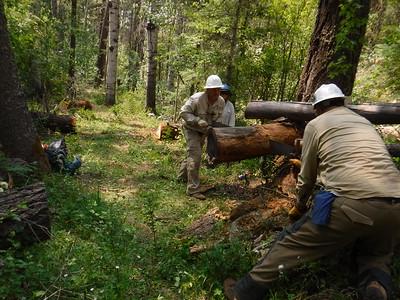 2016 Pecos Wilderness, Santa Fe National Forest, NM (Leader training trip)