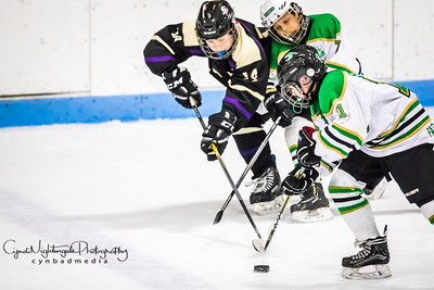 Game 3 Chaska Chan Edina