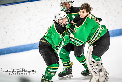 Game 4 Edina Farmington