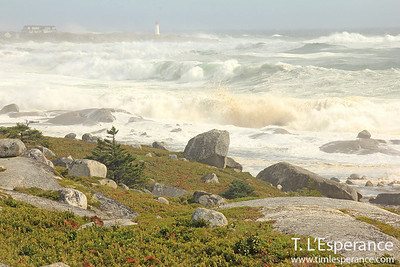 Hurricane Waves at Peggy's Cove.