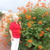 mom ABQ flowers