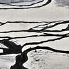 2013 - Yuanyang (detail)