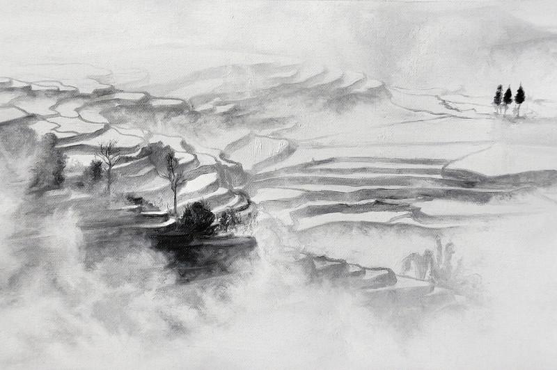 2012 - Miao fields (detail)