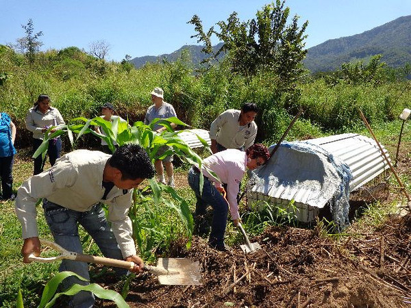 UNACH students and their teacher help aerate the compost pile.