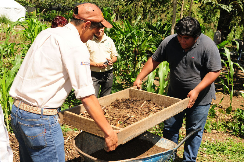 Students sift the compost before it is used as fertilizer.