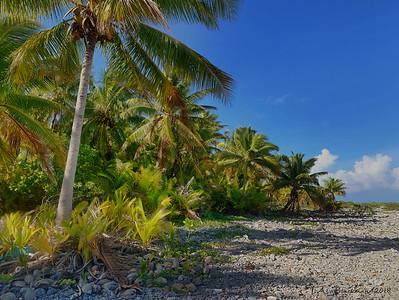Oeno Atoll IMG_1087-Edit