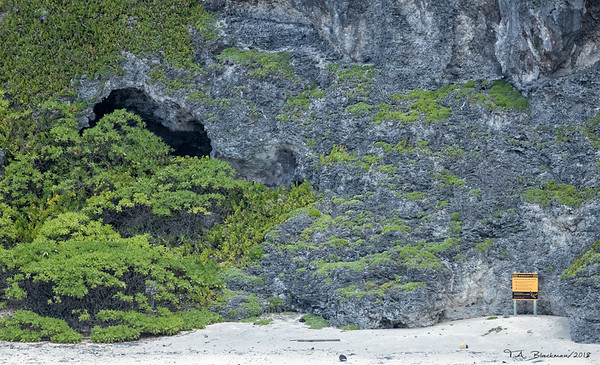 Essex Cave on Henderson Island