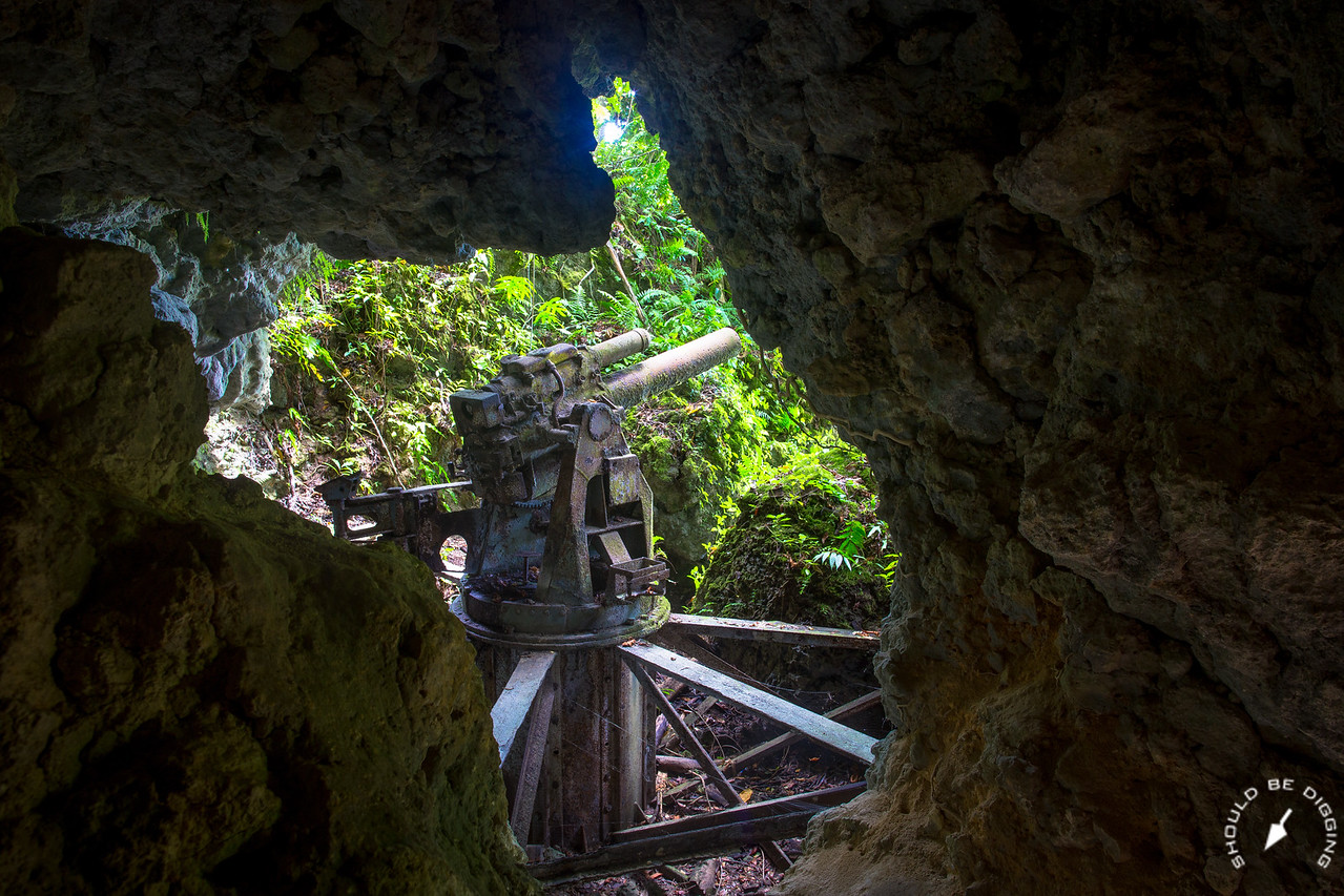 Japanese Artillery, Installed in Cave