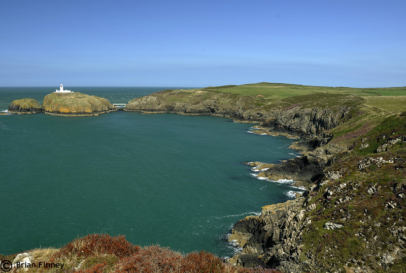 Strumble Head 1
