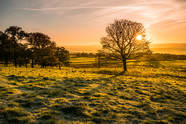 Winter sunrise, looking towards Nelson and Colne.  A light touch of frost on the grass.  Beautiful light on a winters morning.<br /> #pendle, #pendlehill, #ribblevalley, #lancashire