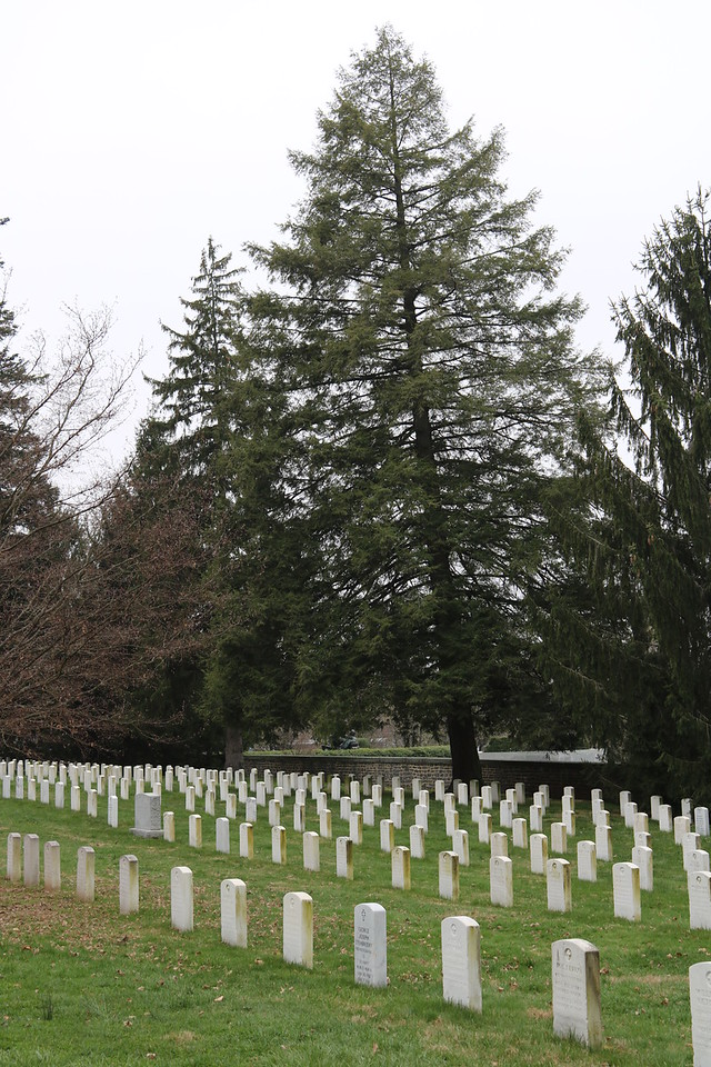 Soldiers National Cemetery 3
