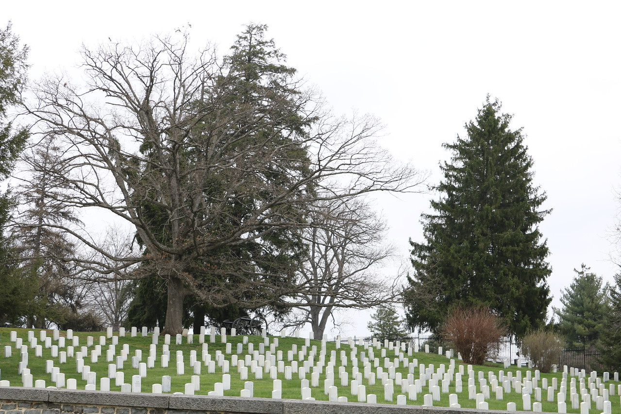 Soldiers' National Cemetery 1