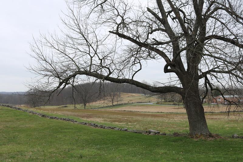 145th Gettysburg, Redding Farm