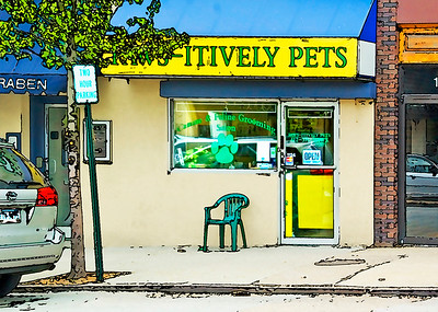 Paws-Itively Pets- (Item-2769)