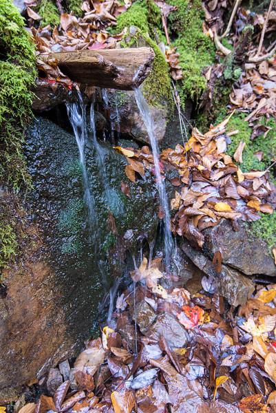 Lehigh Gorge State Park - 19 October 2013