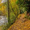 Trough Creek SP 4