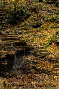 Trough Creek SP 1