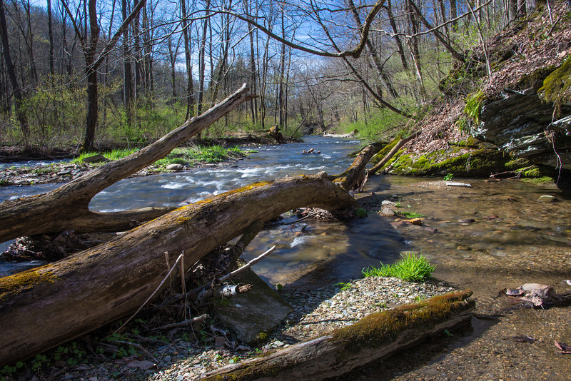 Mill Creek at Trexler Nature Preserve - April 2013
