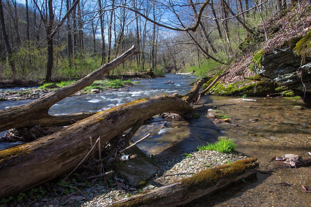 Mill Creek at Trexler Nature Preserve - April 2013