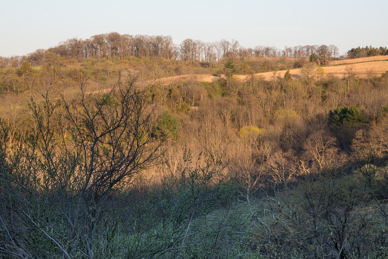 Early morning light on Northern Range - Trexler Nature Preserve - April 2013