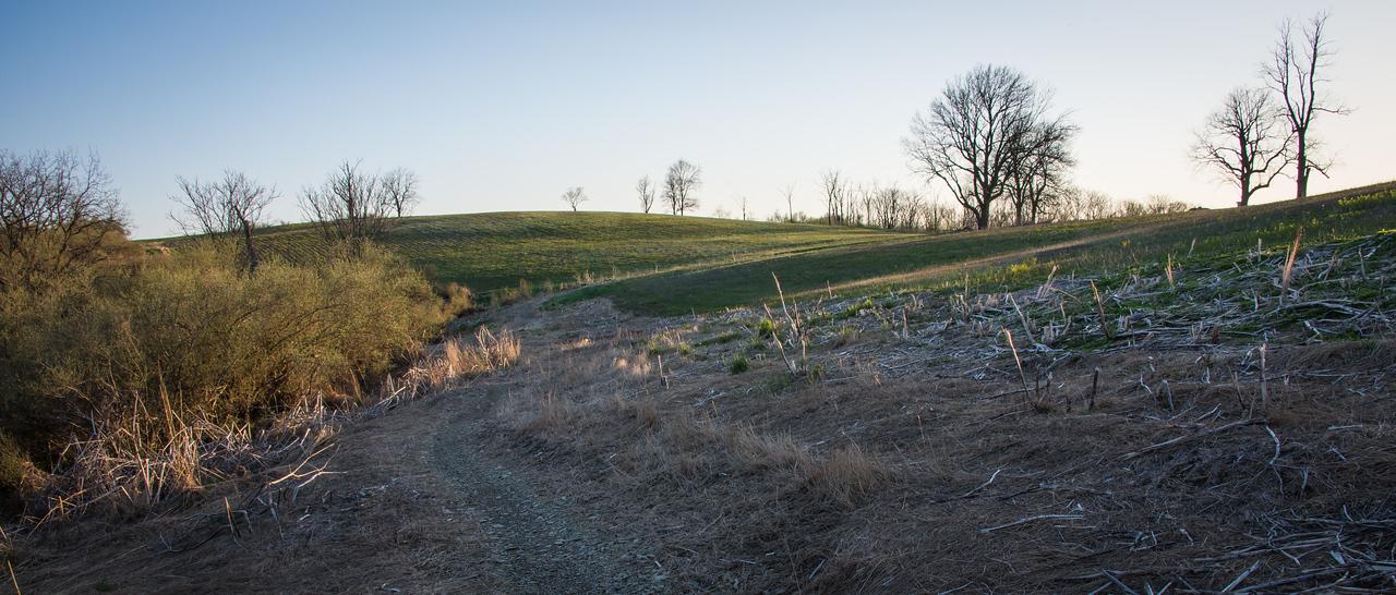Northern Range - Trexler Nature Preserve - April 2013