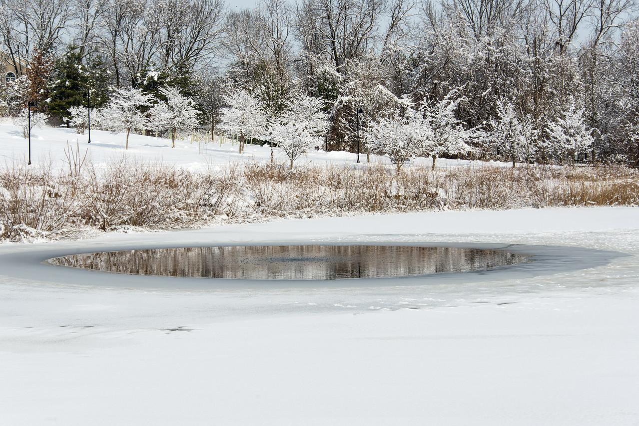 Wilson Farm Park - 02 February 2014