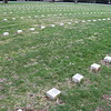 Numbered Grave Markers