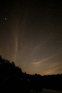 Stars and Lightning bugs